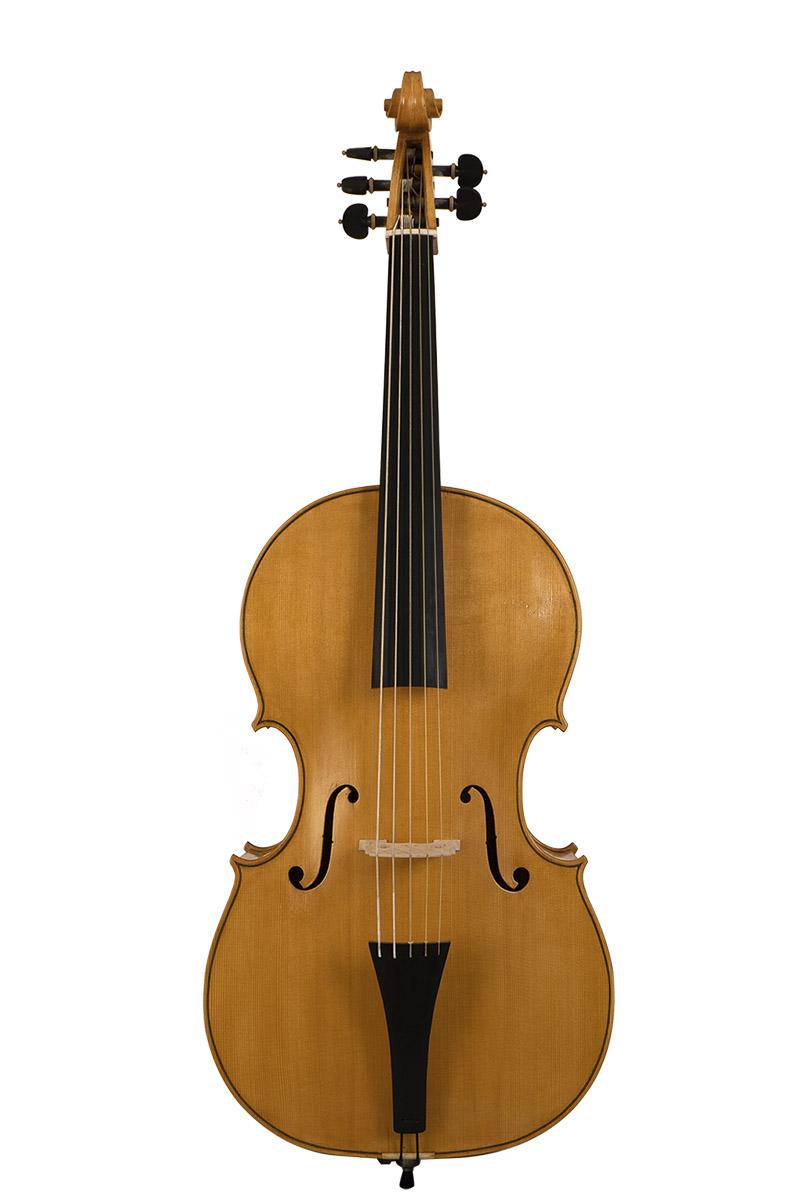 violoncello realizzato da Ester Passiatore